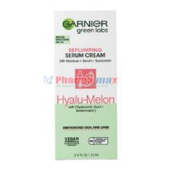 Garnier Green Labs Hyalu-Melon Serum Cream 2.4oz