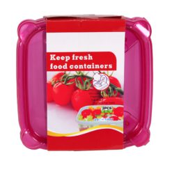 HAIXIN SQUARE CONTAINERS 2/.7L