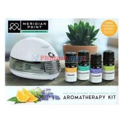 Meridian Point Aromatherapy Kit Portable